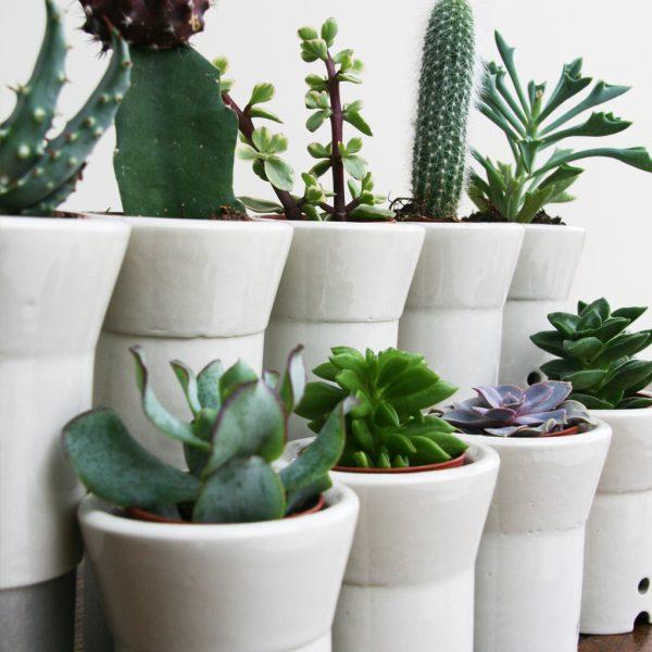 Ceramic industrial tea light indoor planter holder