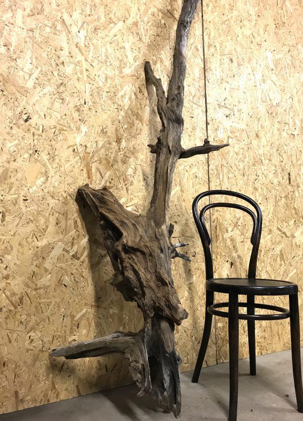 Natural Driftwood Art Sculpture Piece Great Patina Scottish