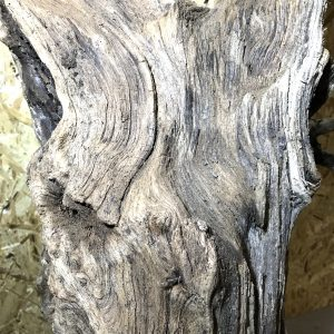 Natural Driftwood Art Sculpture Piece Great Patina Scottish