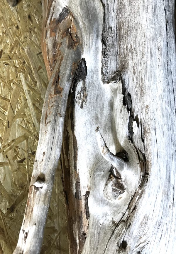 Scottish Natural Driftwood Art Sculpture Piece Great Patina